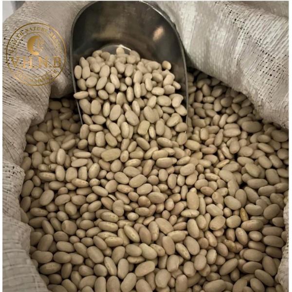 Φασόλια μετρια Χρυσούπολης 1kg